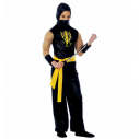 Power Ninja kostume