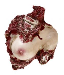 Blodig kvinde torso