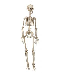 Hængende skelet, 90 cm