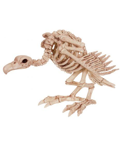 Grib skelet