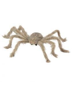 Behåret edderkop