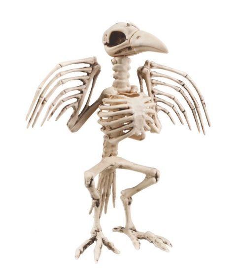 Krage skelet 32 cm