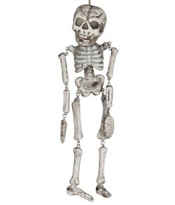 Big Head skeletn 35 cm