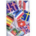 Kageflag