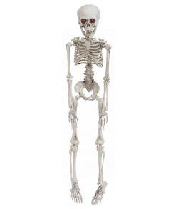 Skelet med lys i øjne, 50 cm