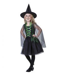 Wicked Witch kostume