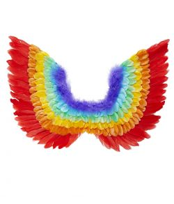 Regnbue fjer vinger