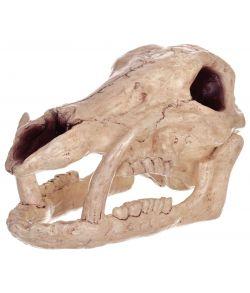 Vildsvin kranie i plastik med store hjørnetænder og justerbar kæbe.