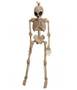Alien skelet til halloween pynt.