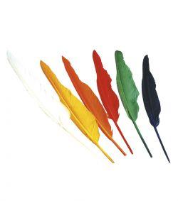 12 stk. fjer i flere farver til indianer udklædningen.