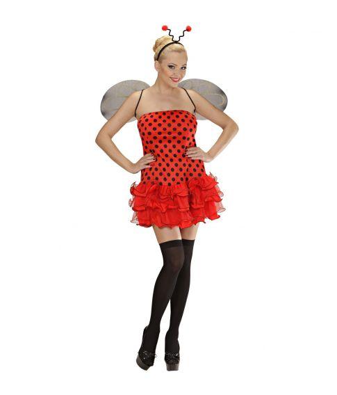 4ae2afaae55 Køb Mariehøne kostume med kjole, vinger og hårbøjle følehorn i 3 ...