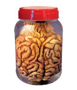 Hjerne i laboratorie glas til halloween dekoration.