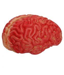 Hjerne i plastik til halloween.