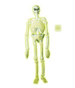 Hvidt skelet der lyser op i mørke. 150 cm.