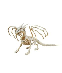 Drage skelet.