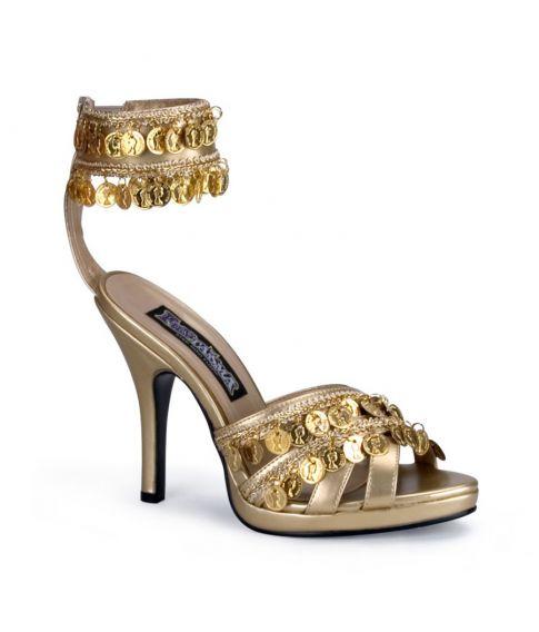 Guldsko med mønter