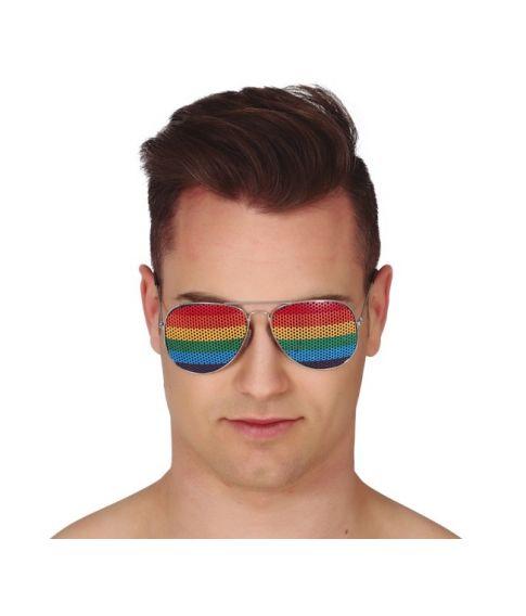 Briller med regnbue farvet net og sølv stel