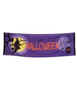 Midnight moon banner