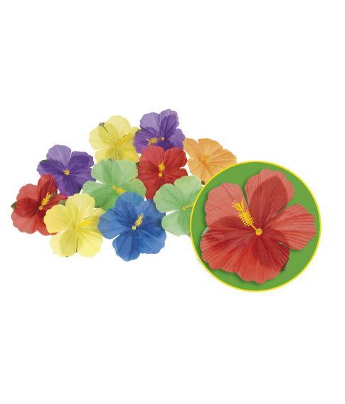 Hawaiiblomster