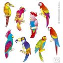 Tropiske fugle