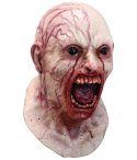 Halloween masker til voksne